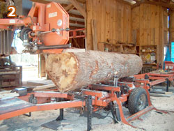 Logs being cut in the WoodMizer LT70 band saw.