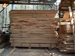 3,000 Board feet of Pecan boards air-drying.